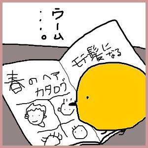 4散髪ヒヨコ1.jpg