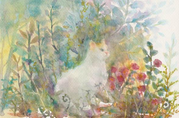 白い猫-72.jpg