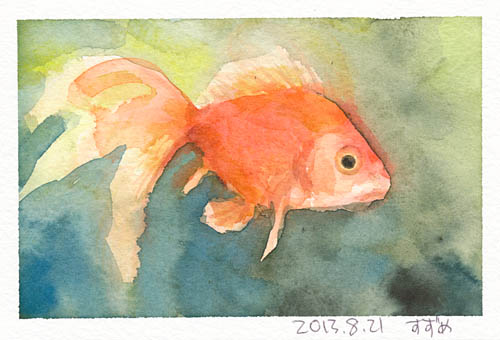 金魚821.jpg