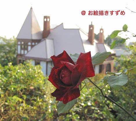 風見鶏の家と薔薇.jpg