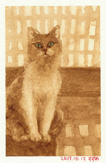 cat1012.jpg