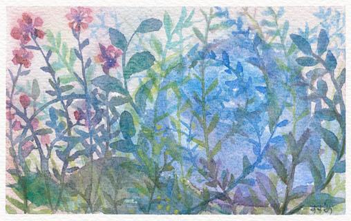 plants114.jpg